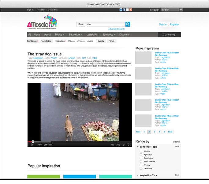 am-videopage