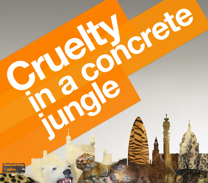 Cruelty in a concrete jungle