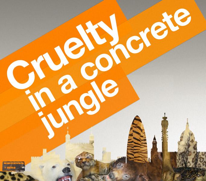 Cruelty in a concrete jungle